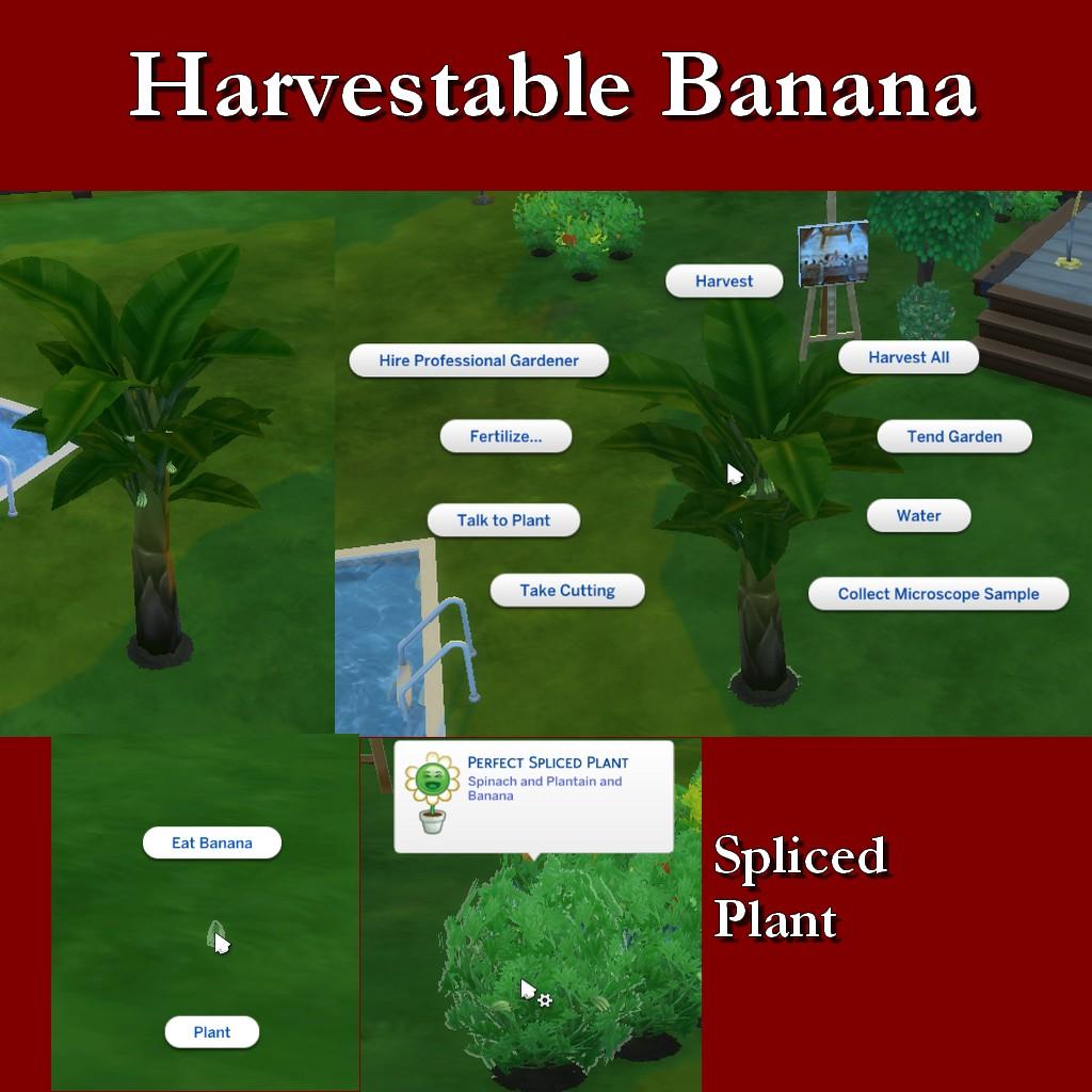 BananaPost.jpg