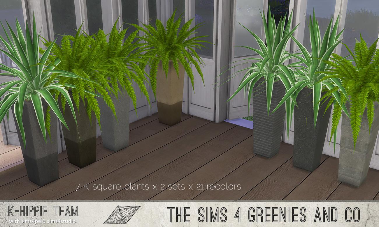 khippie-imago-squareplant-01.jpg