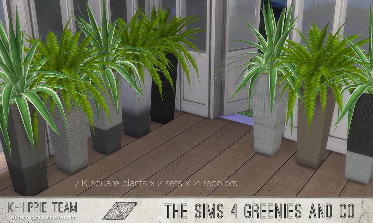 khippie-imago-squareplant-02.jpg