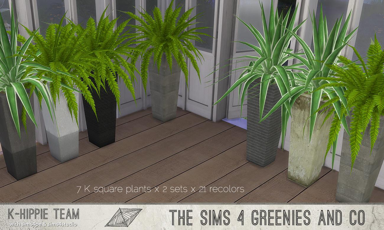 khippie-imago-squareplant-03.jpg