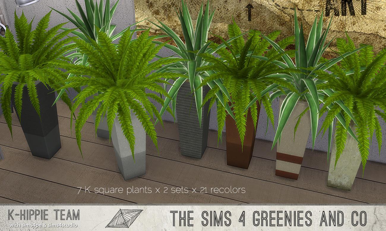 khippie-imago-squareplant-06.jpg
