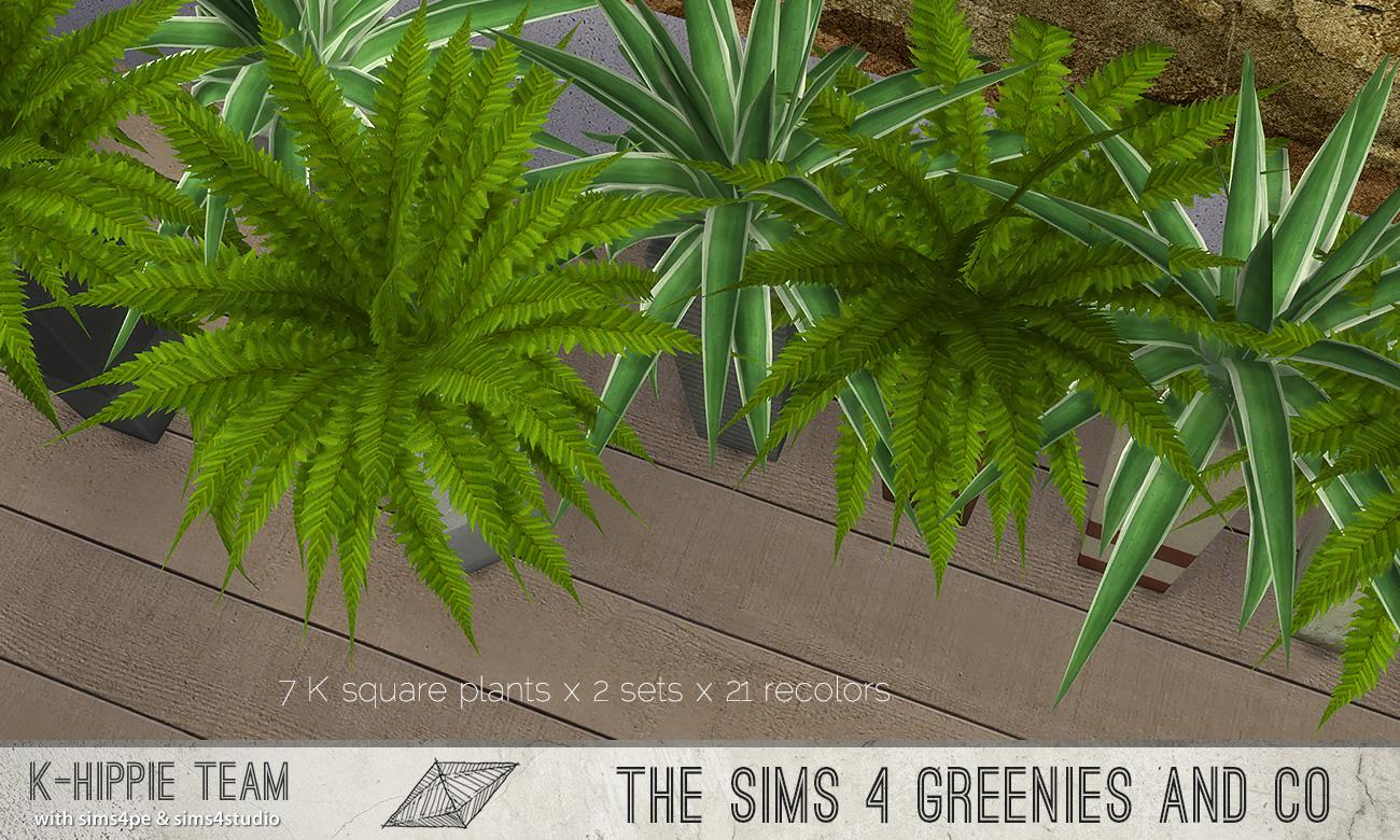 khippie-imago-squareplant-07.jpg