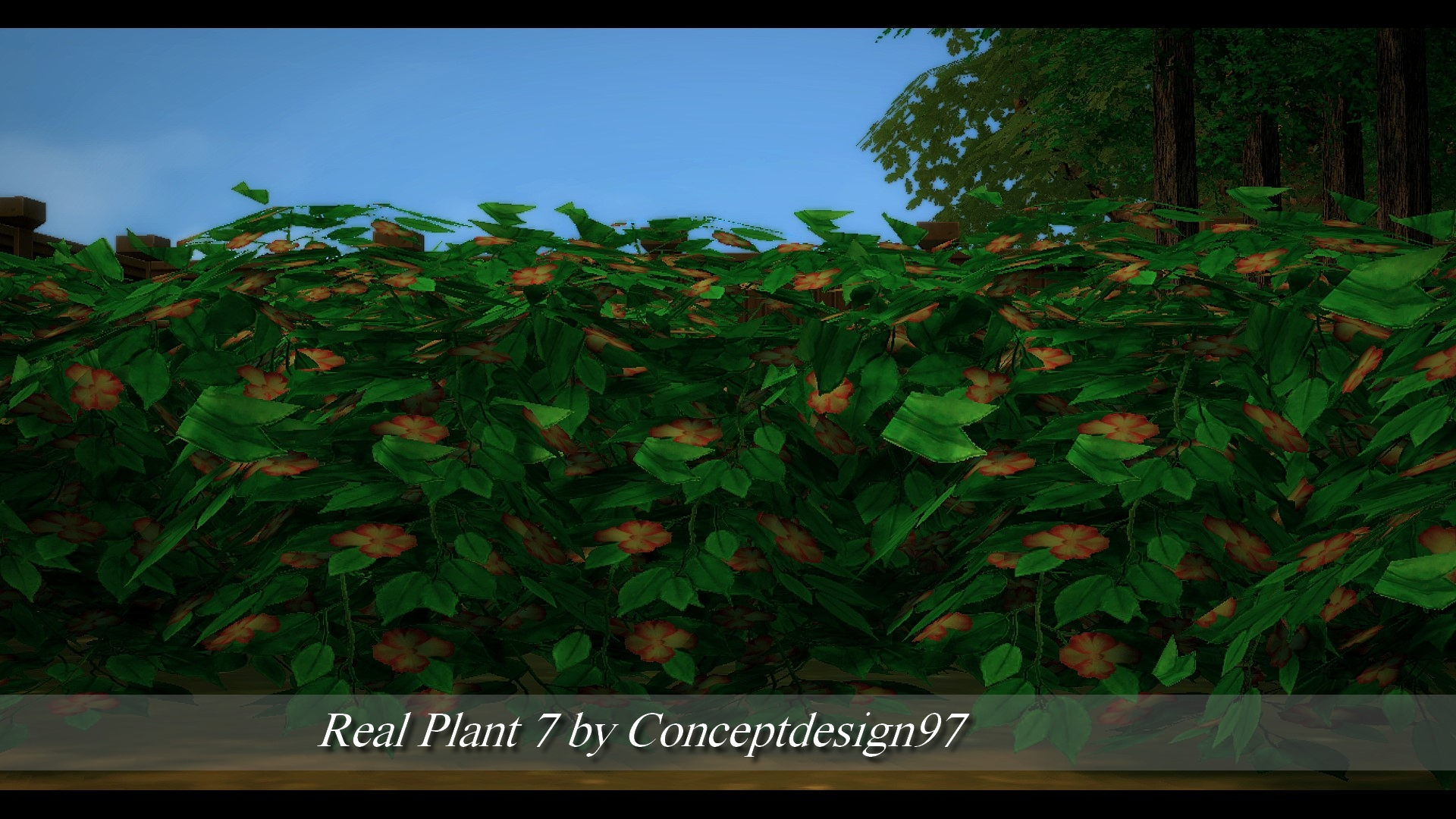 Real Plant 7.jpg