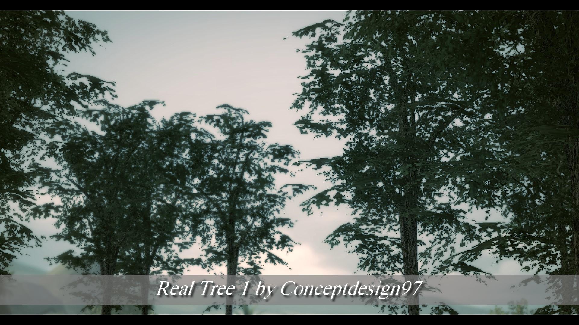 Real Tree 1.jpg