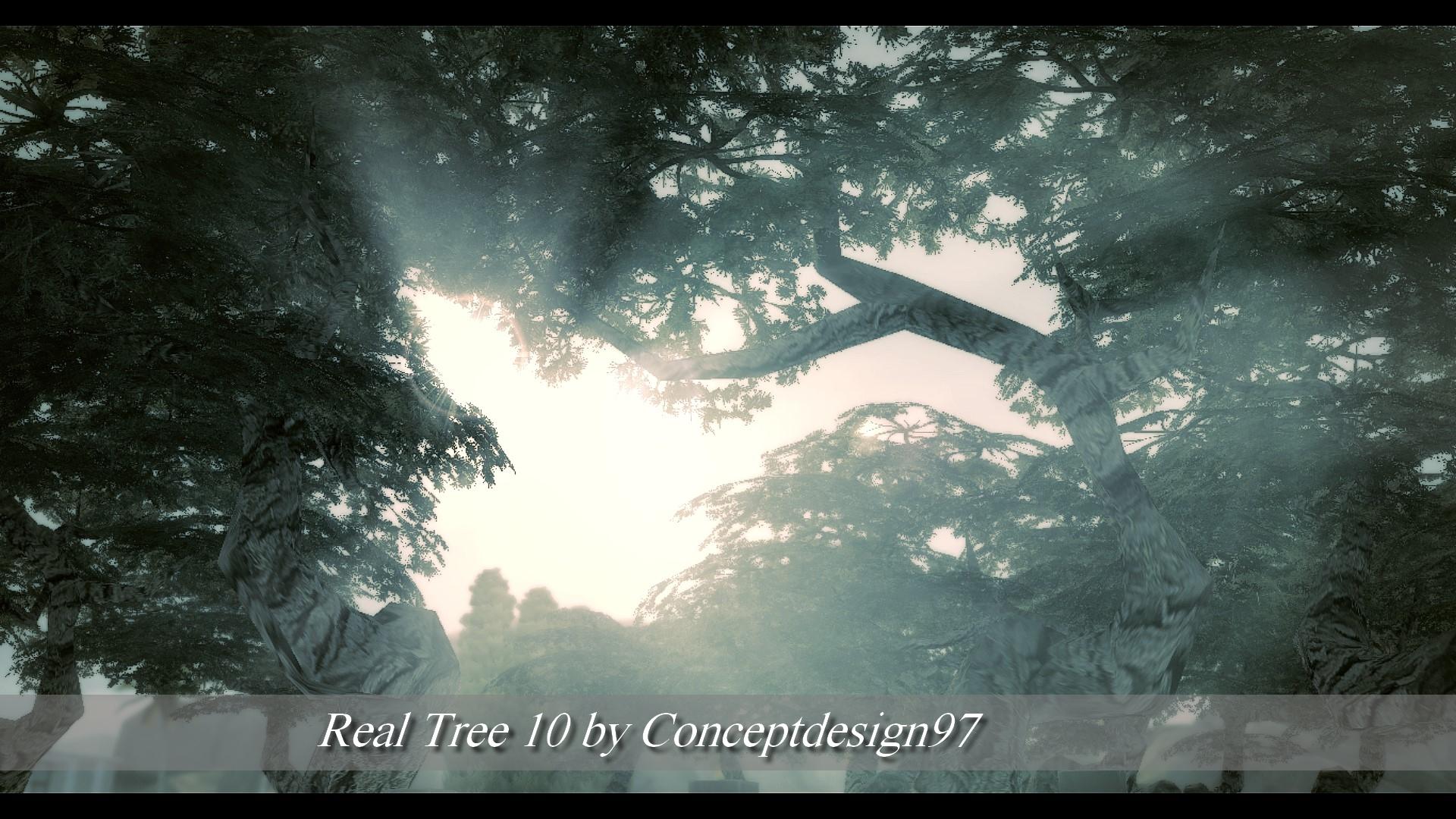 Real Tree 10.jpg