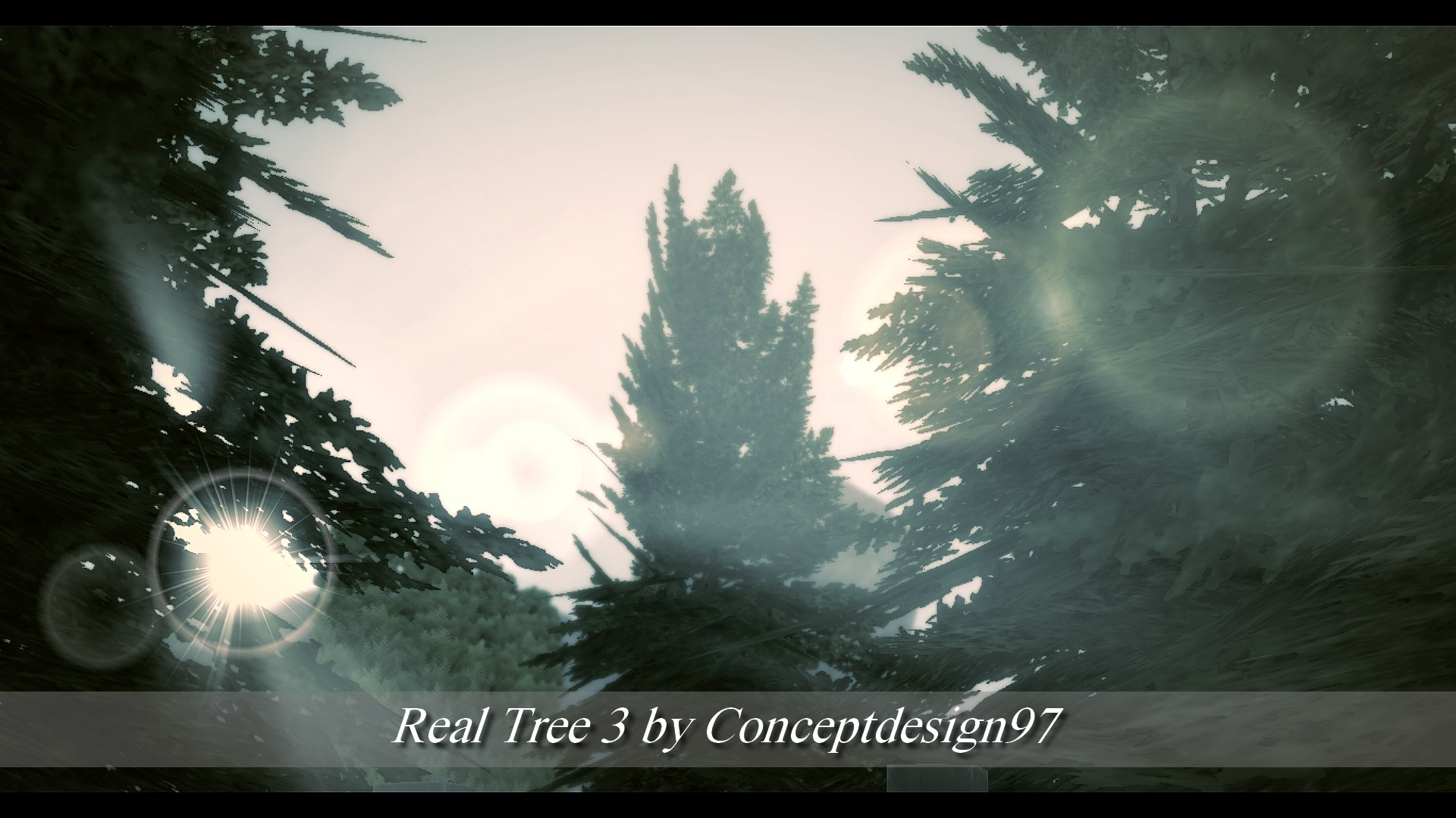 Real Tree 3.jpg