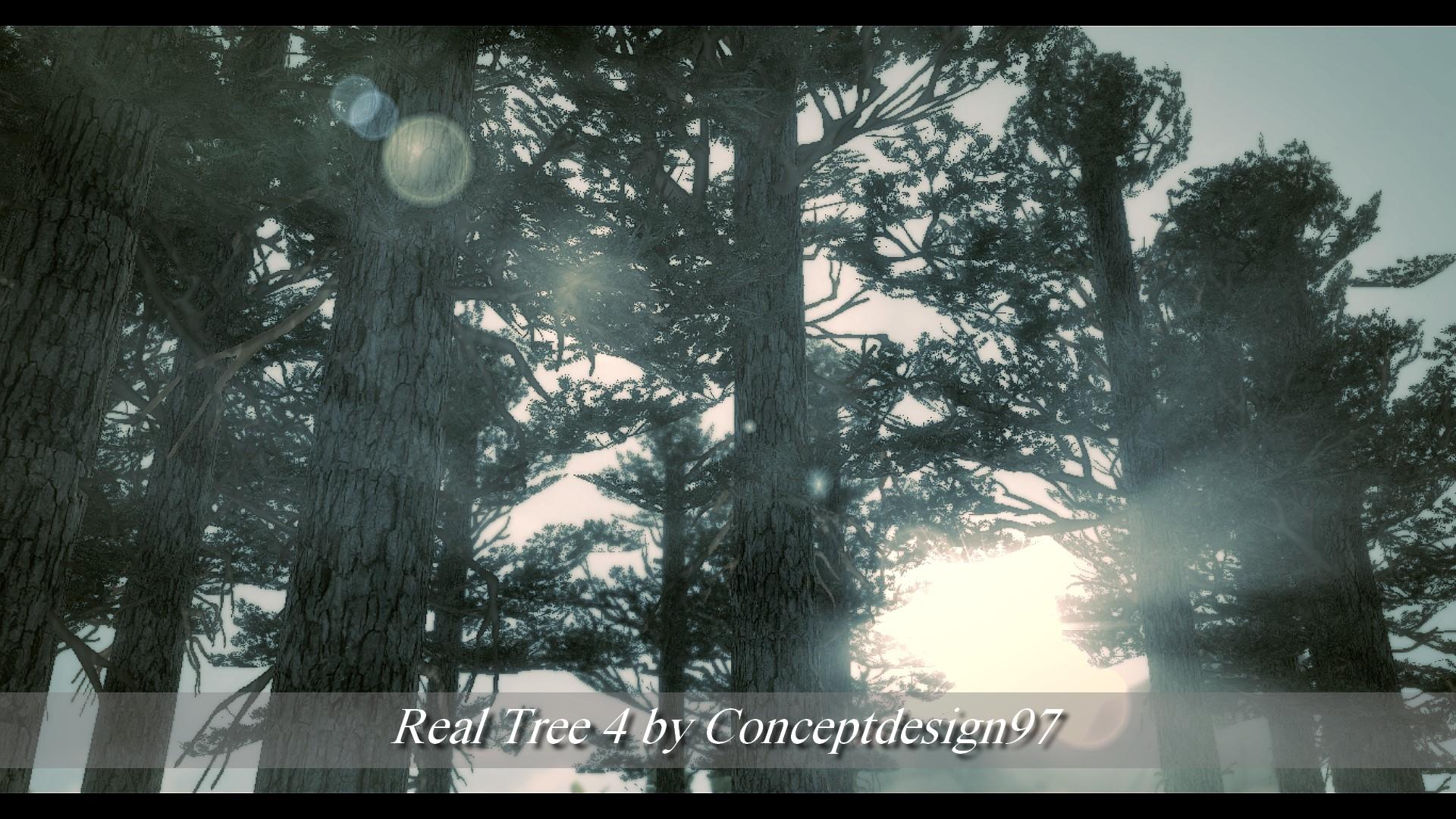 Real Tree 4.jpg
