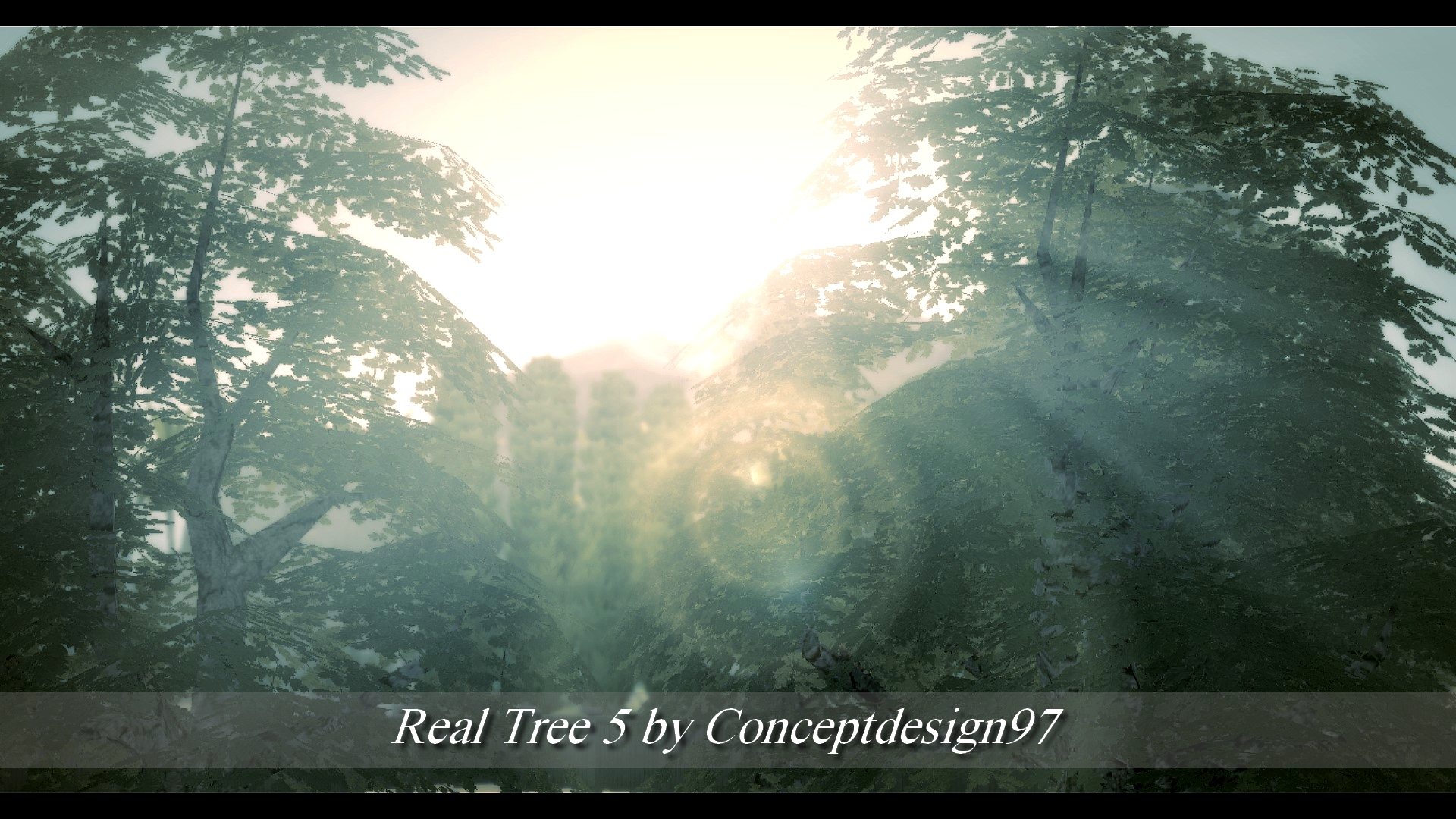 Real Tree 5.jpg
