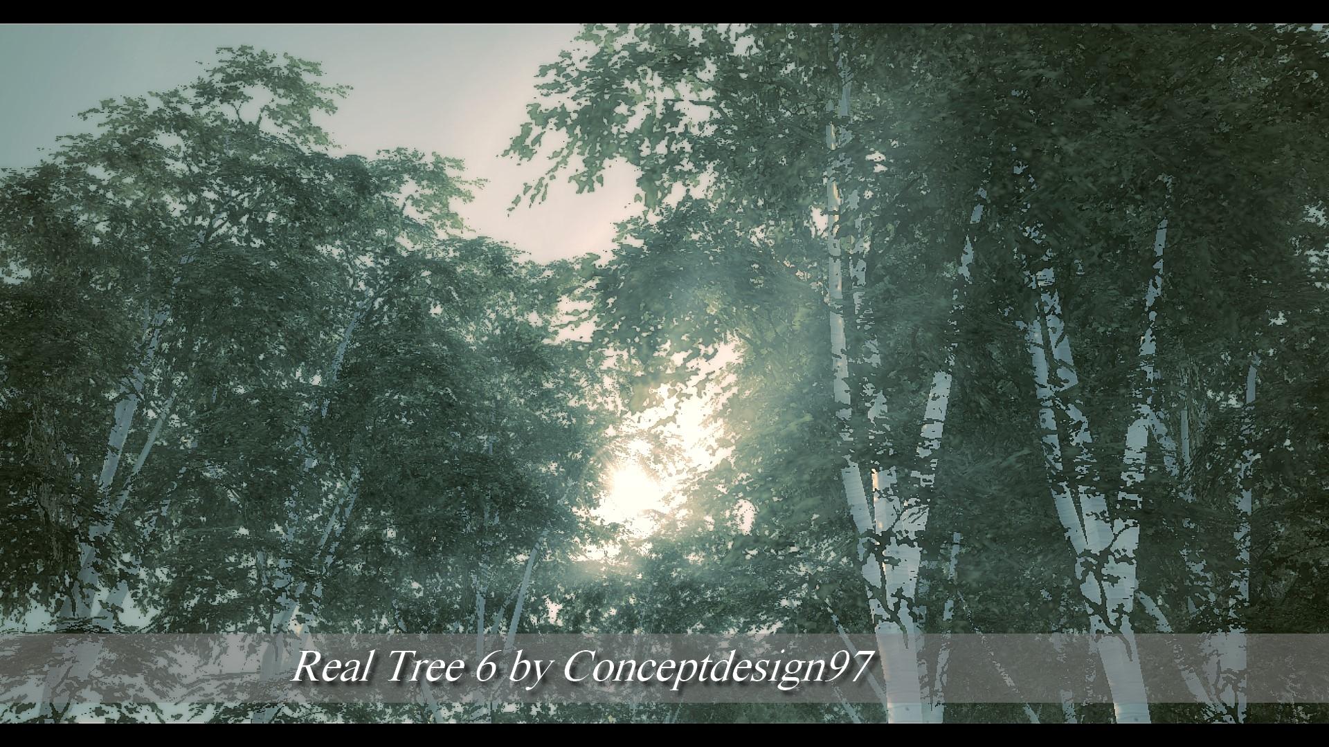 Real Tree 6.jpg
