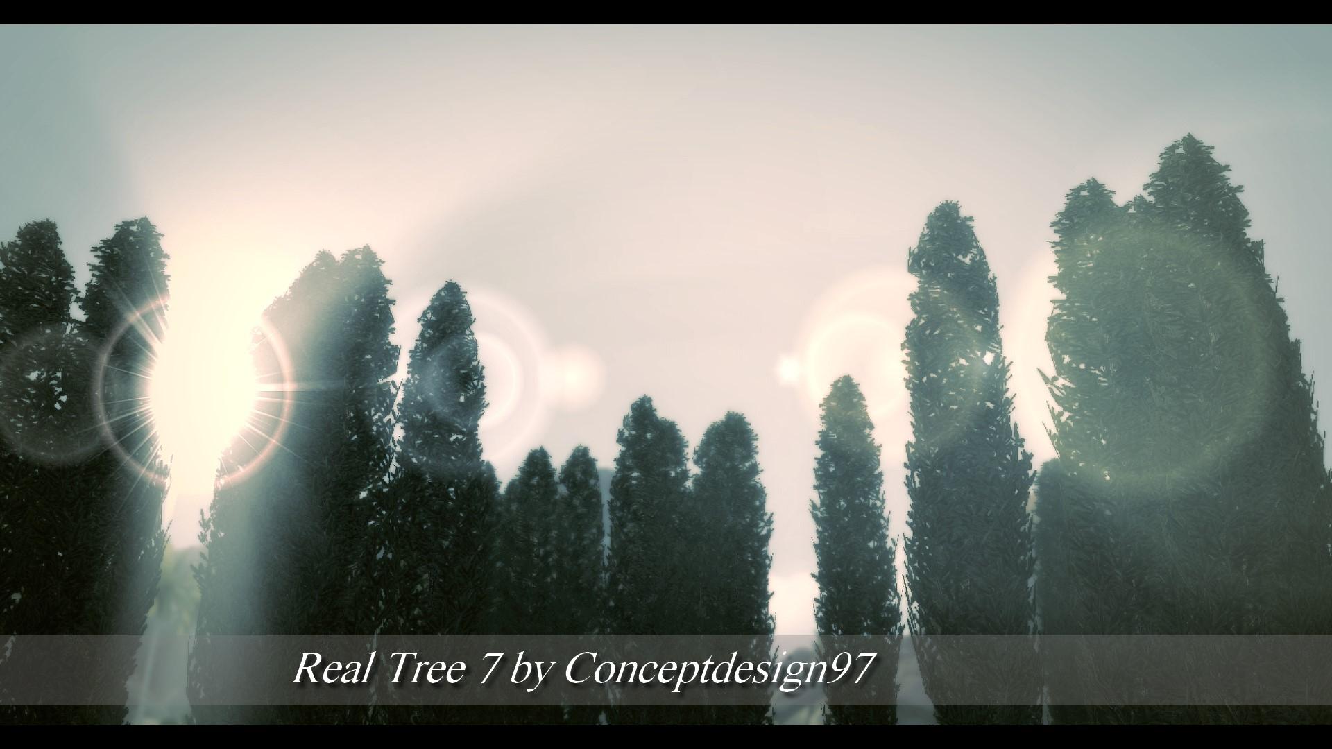 Real Tree 7.jpg
