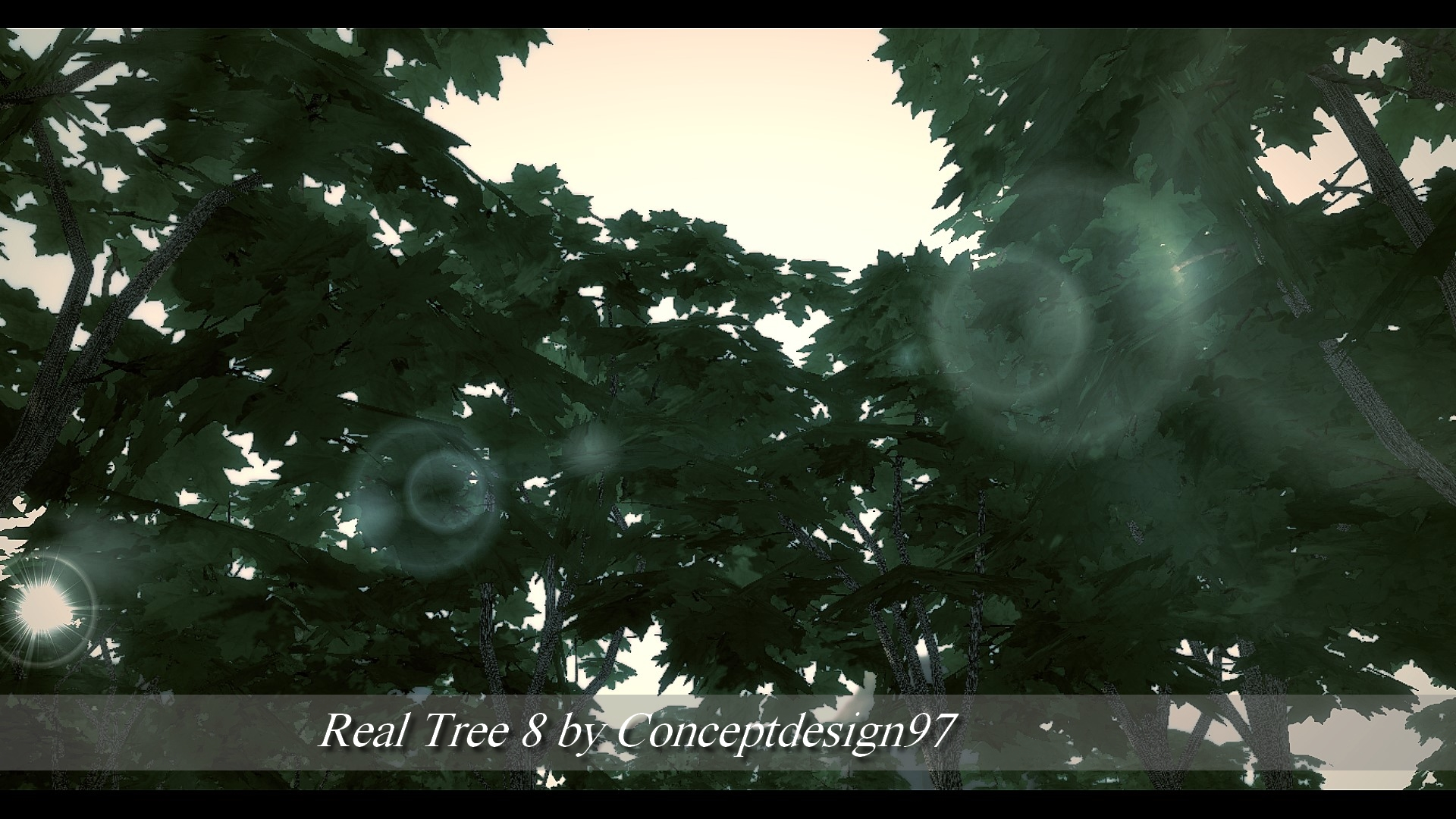 Real Tree 8.jpg