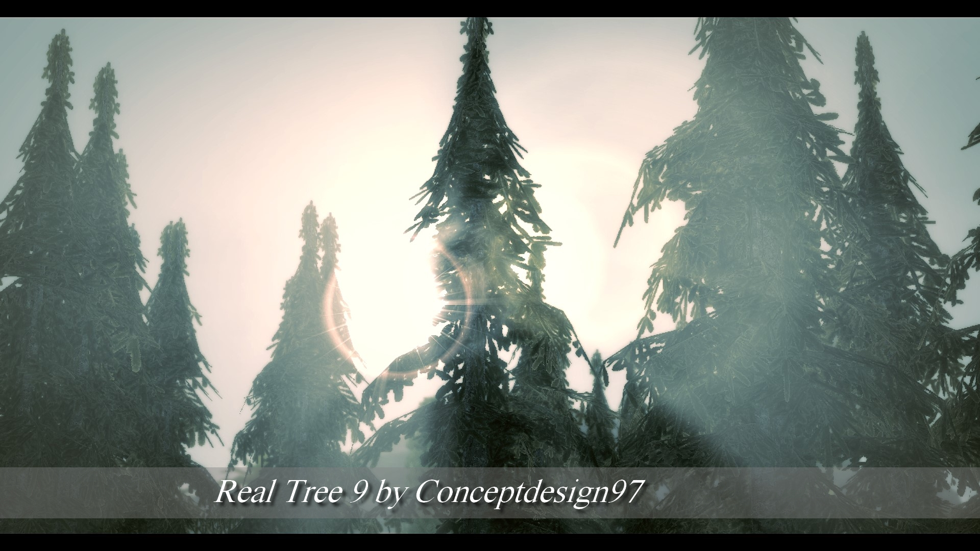 Real Tree 9.jpg